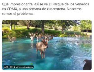 coronavirus-mexico-memes-humor-pandemia-1
